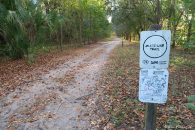 View of one of many of the hiking/biking/riding trails in the park