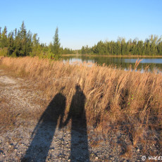 CP Campground Rating – Markham Park, Sunrise, FL