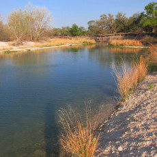 SP Campround Review – South Llano River State Park, Junction, TX