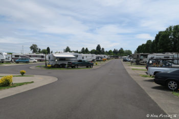 Another row view. RV on left in site #93.