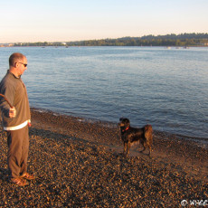 RV Park Review – Columbia River RV Park, Portland, OR