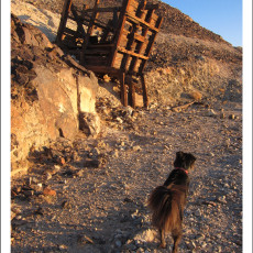 In Search of Gold – American Girl Mine, CA
