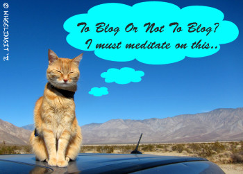 To blog...or not to blog....oh the eternal question