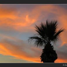 Sunsets In The Desert = Nature's Perfect Color Storm