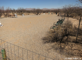 View of lovely dog park just behind the park