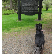 SP Campground Review – Emigrant Springs State Heritage Area, Pendleton, OR