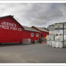 Fishing, History & Alligator-Men – Long Beach Peninsula, WA