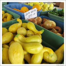Food, Glorious Food -> The Joy Of Farmers Markets & Local Farms On The Road