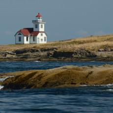 Ducks & Lighthouse Nuts – Patos Island, WA