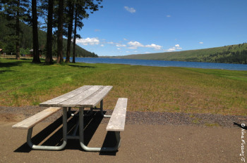 View of one of the many picnic tables by the day use area