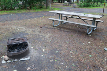 "View of typical ""sitting area"" with picnic table and fire-pit"