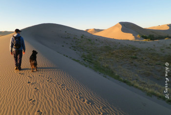 The amazing sand at Bruneau Dunes State Park