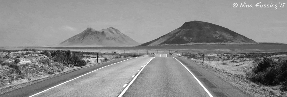Sometimes you never know where the road will take you. This is lonely Hwy 20/26 in Idaho.