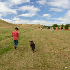 RV Park Review – Hart Ranch RV Resort, Rapid City, SD