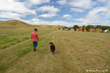 Walking Polly in the HUGE green pet area at Hart Ranch Resort