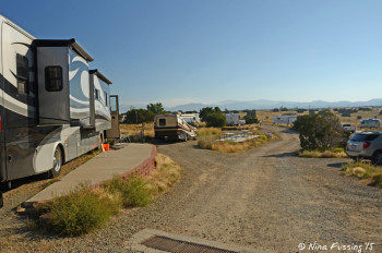 View further down rear Yucca area. RV in site #A on left. This area feels much more like a public park.