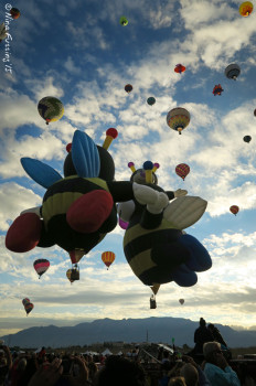 """The Bumblebee balloons often """"kiss"""" as they ascend."""