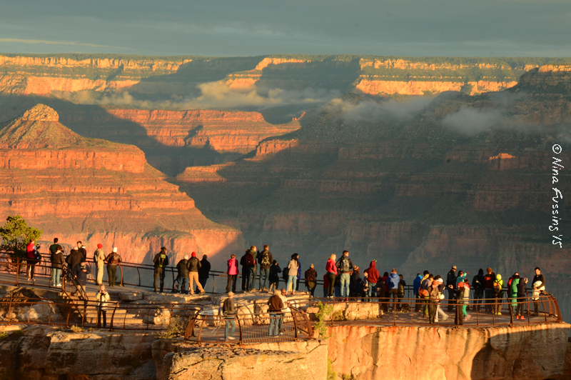 Sometimes a little perspective makes all the difference. Early AM at Mather Point