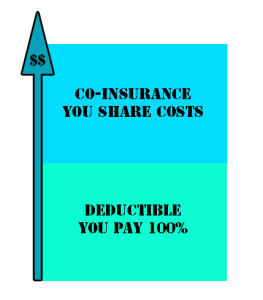 With co-insurance your costs are shared after the deductible is met