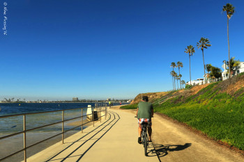 Biking the Bay on another perfect day