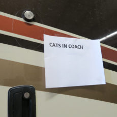 We put clear signs on outside and inside of coach if we leave the cats