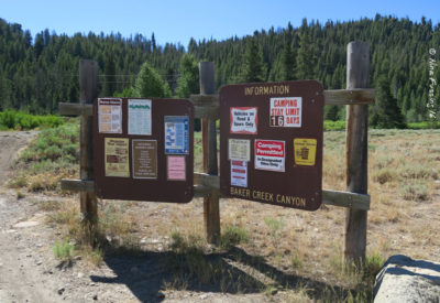"Camping rules at Baker Creek which has ""designated dispersed"" sites"