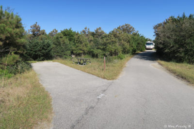 View towards far end of P Loop. Site P44 on left. RV in site P42 in back.