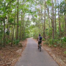 CP Campground Review – James County Island Park, Charleston, SC